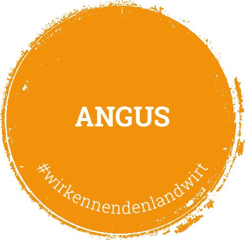 Kalieber Angus-Produkte
